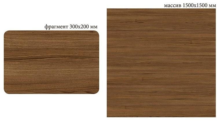 W-024 Oak european